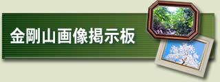 金剛山画像掲示板
